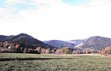 Le sommet supportant la ruine vue depuis le plateau de Salm avec au fond les anciens pâturages de la haute Loge.
